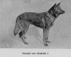 Horand Von Grafrath I