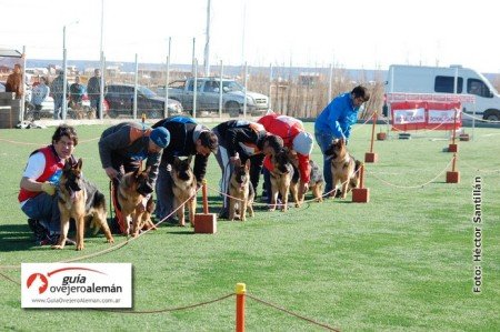 Photo of Río Gallegos   Torneo Austral 2015