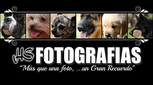 HSfotografias.com
