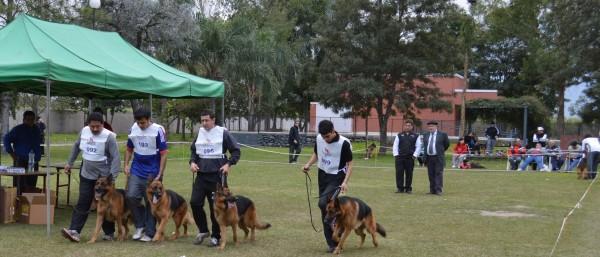 Photo of Tucumán 2015! Final Torneo Nacional