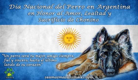 2 de Junio Día Nacional del Perro