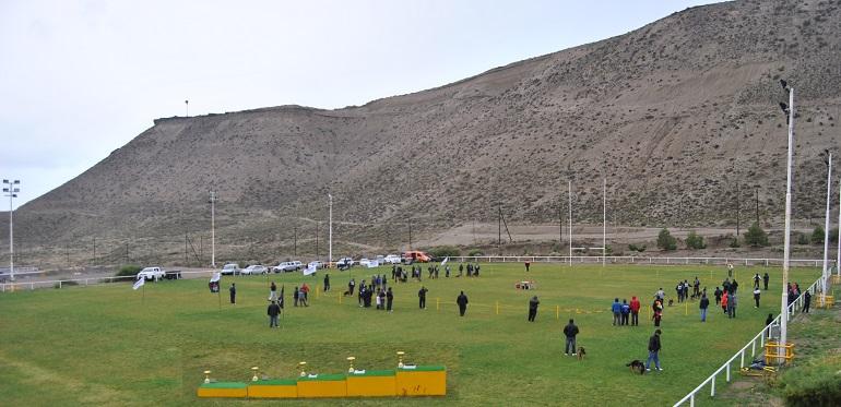 Comodoro Calafate Rugby Club 1084