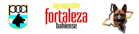Banner Fortaleza Bahíense