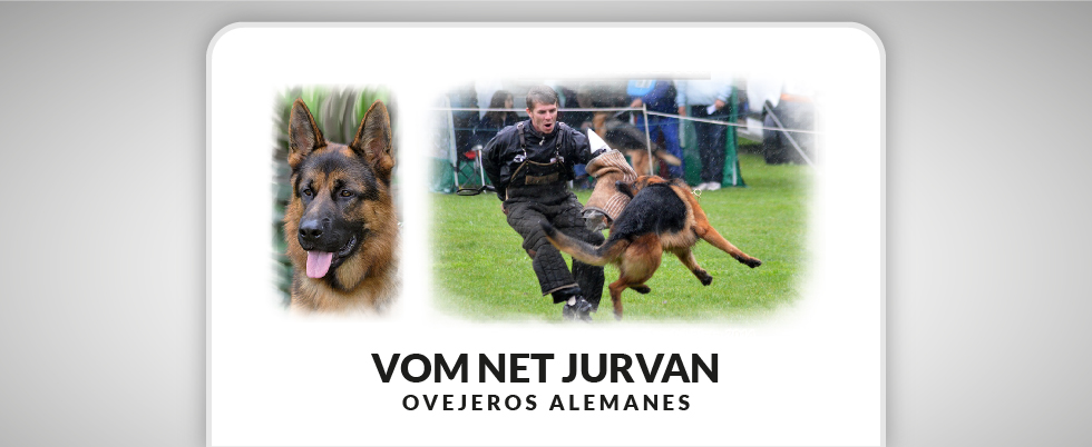 Photo of Vom Net Jurvan