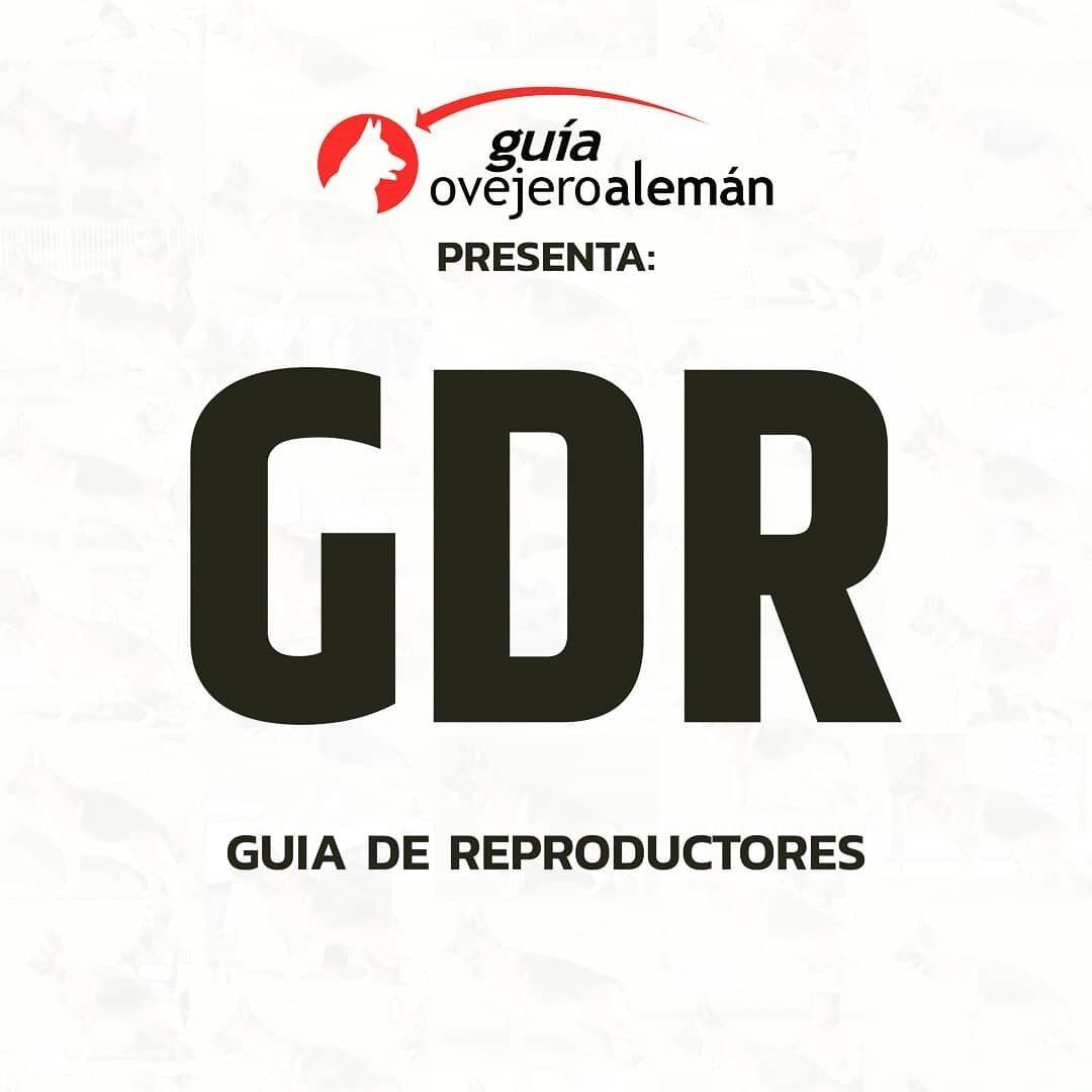 GDR | Guía de Reproductores